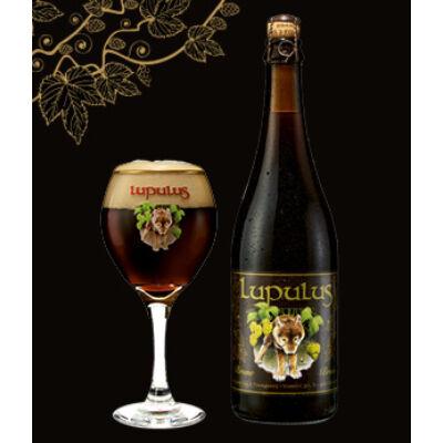 Lupulus Dark 0,75L